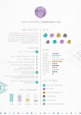 resume-design-2014-7
